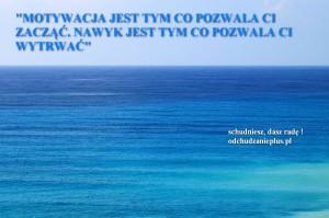 odchudzanieplus.pl tapeta1