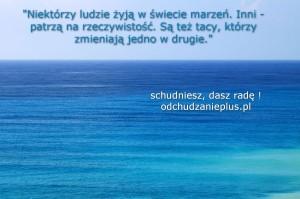 odchudzanieplus.pl tapeta10