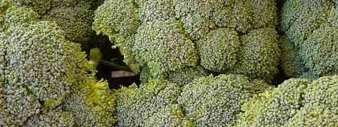 Dieta brokułowa